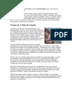 Resumo Do Livro a Pata Da Gazela