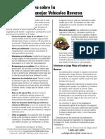 spfsvehicleback.pdf