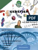 Generalidades de genética