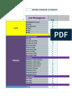Rapport Marchandiseur Excel 02-06-2019 (Version 1) (Récupéré)