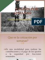 Cotización Por Semanas. Presentación Power Point (1)