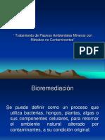 Tratamiento de Pasivos Ambientales Mineros