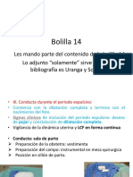 Bolilla 14