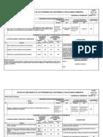 Formato Ica-pozos Apiay 22