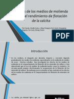 Disertacion de Flotacion