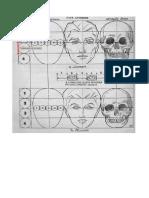 Resumo.pdf