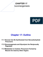 Chapter 17 Lecture Pda Summer 2019