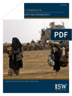 ISW Report - ISIS's Second Comeback - June 2019.pdf