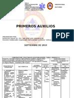 PROGRAMA PRIMEROS AUXILIOS 2010-2
