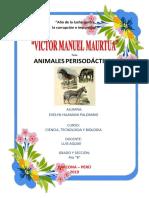 Animales Perisodáctilos