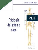 fisiologia tema 3 oseo