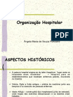 1. Organizacao Hospitalar-1