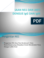 Satrya Pemeriksaan Ns1 Dan Anti Dengue Igg Dan Igm