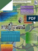 Parámetros físicos y químicos de suelos de campos de futbol