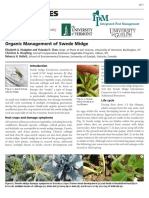Swede Midge Organic Management