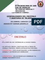 Generalidadesdeencefalo.y.anatomiadetalamo