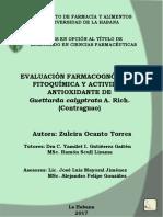 Tesis de Diploma Zuleira Ocanto Torres