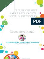 Bases Educacion Inicial