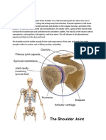 assignment-shoulder-joint.rtf