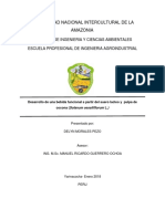 DESARROLLO DE UNA BEBIDAD FUNCIONAL A PARTIR DE SUERO LACTEO Y PULPA DE COCONA.docx