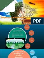 10.- Estrategia de Manejo Ambiental-convertido