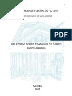 Relatório de campo piraquara.pdf