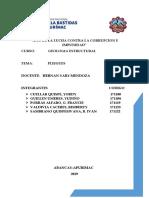 244669200 Pliegues Monografia Docx Termionado Chibvoc 1