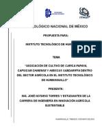 Asociación de Cultivo de Carica Papaya, Capsicum Chinense y Hibiscus Sabdariffa Dentro Del Sector Agrícola en El Instituto Tecnológico de Huimanguillo