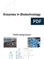 Enzymes in Biotechnology