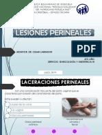 Marly Laceraciones Perineales