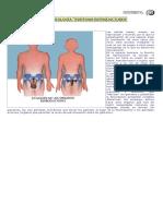 Guía de Biología Sistemas Reproductores