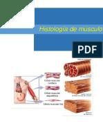 Histología de Músculo