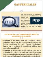 1-Normas-Relativas-a-la-Actividad-Pericial-Exposicion-dia-07-07-2019 (2)