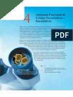Caracteristicas Gerais Procariotos e Eucariotos