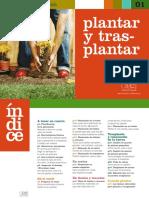 Guia para plantar y transplantar