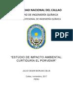 Ambiental Gestion, Curtiduria, Borjas Julio