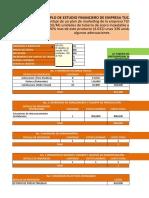 Plantilla Financiera Final