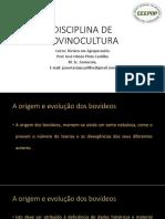 Disciplina de Bovinocultura de Corte e Leite Aula 2