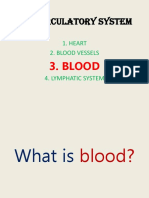 THE CIRCULATORY SYSTEM(blood).pptx