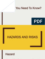 Grade 7 Hazards and Risks