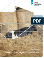 Fact Sheet How to Manage a Down Cow
