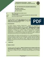 Modelo de Informe Pecsa Oct. 2017 (1)
