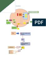 EFECTO 2 farmacologia.docx