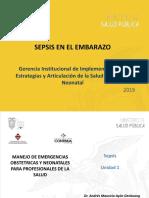 Sepsis en el Embarazo_.pdf