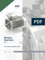 Product Catalogue Asynchronous Motors BX ENG_R04_0_.pdf