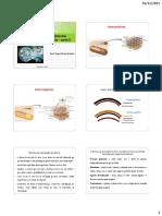 20151116_113648_Aula+5+de+Microbiologia+Geral (1)