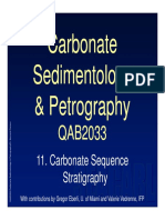 QAB2033_Topic 11_Sequence Stratigraphy.pdf