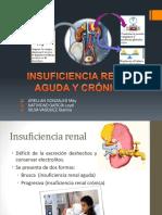 Insuficiencia Renal Aguda y Crónica