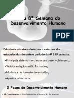 4ª+à+8ª+Semana+do+Desenvolvimento+Humano