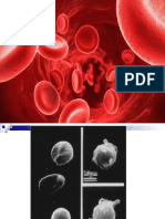 CLASE TEORICA  HEMOGLOBINA Y NUTRICION SMP (2).pptx